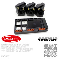 DELPHI IGNITION COILS & REGITAR DFI MODULE [HOLDEN V6 3800 3.8L MOTOR]